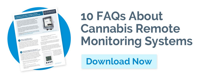 Cannabis FAQs